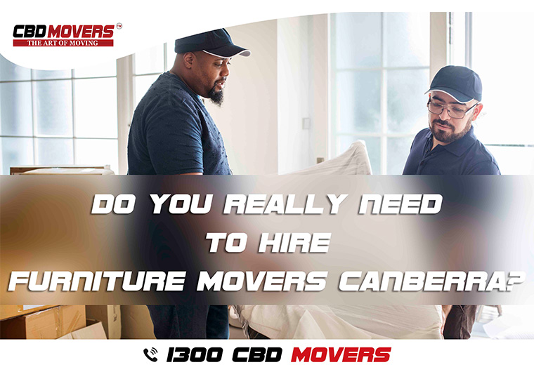 furniture movers canberra