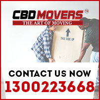 removals in mount clear