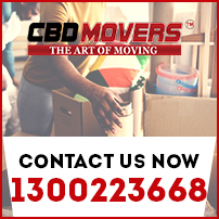 removal services alfredton