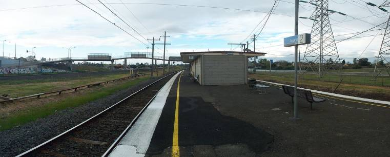 Jacana Melbourne