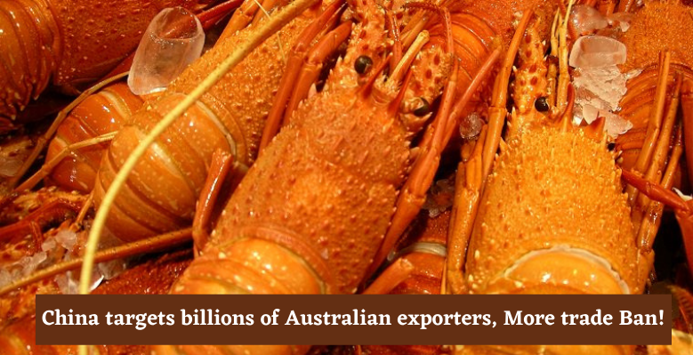 China targets billions of Australian exporters, More trade Ban!